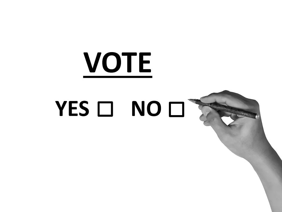 referendum miruna ioani