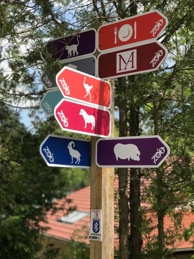 Grădina zoologică din Sibiu miruna ioani